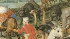 L'Odyssée des animaux